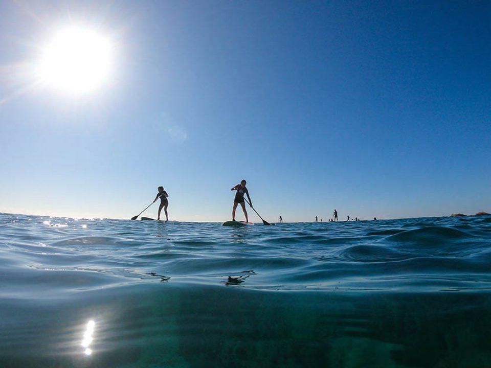 Aloha Paddle Club sea tour